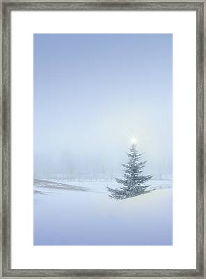 Christmas Spirit Framed Print