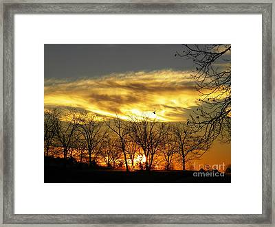 Christmas Sunrise Framed Print