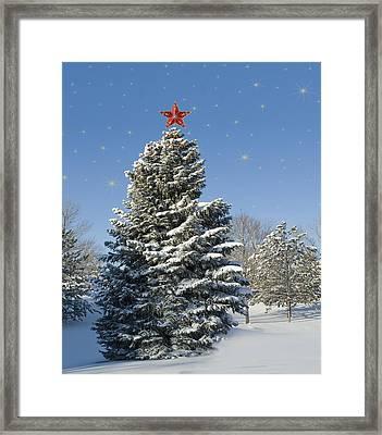 Christmas Tree Framed Print by Juli Scalzi