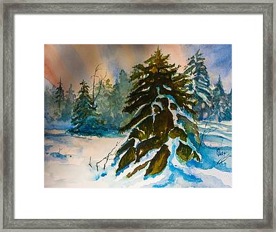 Christmas Tree Forest Framed Print