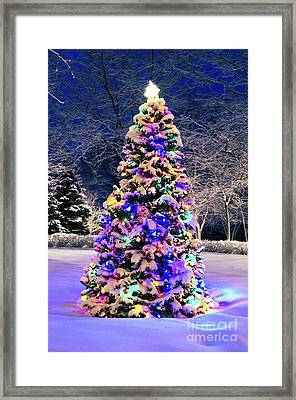Christmas Tree In Snow Framed Print