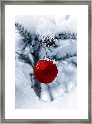 Christmas Tree Framed Print by Joana Kruse