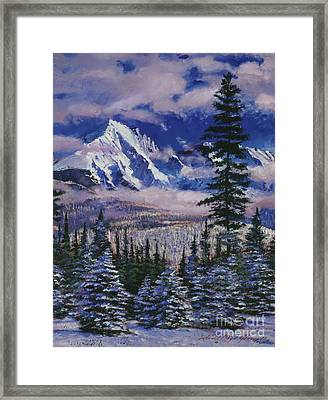 Christmas Tree Land Framed Print by David Lloyd Glover