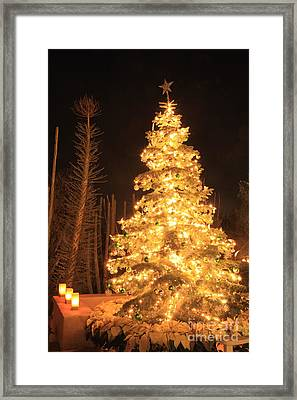 Christmas Tree Lights Framed Print