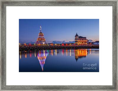 Christmas Tree Reflection Framed Print by Susan Cole Kelly