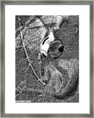 Christmas Tree Squirrel Framed Print