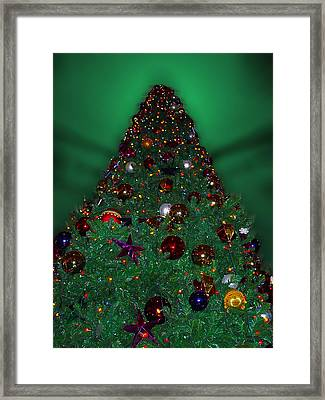 Christmas Tree Framed Print by Thomas Woolworth