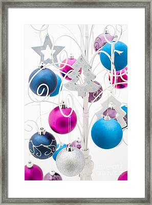 Christmas Tree Tree Framed Print by Anne Gilbert