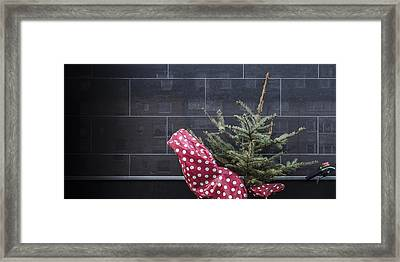 Christmas Tree Unadorned On The Street Framed Print by Thomas Olbrich