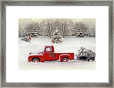 Christmas Trees Framed Print