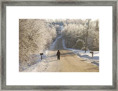 Christmas Walk In Maine Framed Print by Alan Holbrook