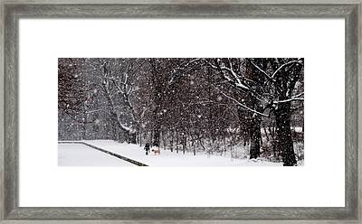 Framed Print featuring the photograph Christmas Walk by Jacqueline M Lewis