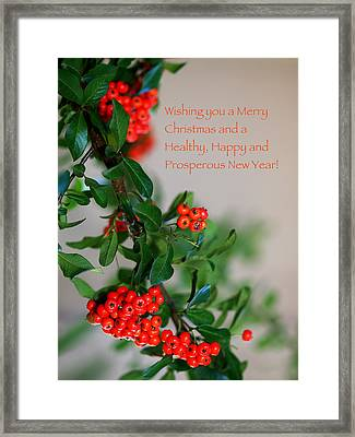Framed Print featuring the photograph Christmas Wishes by Annette Hugen