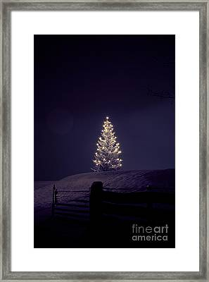 Christmastree Framed Print