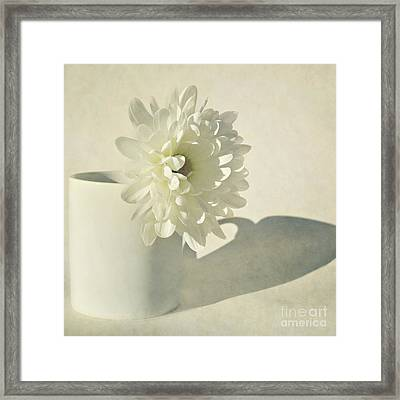 Chrysanthemum Shadow Framed Print by Lyn Randle