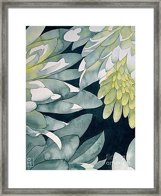Chrysanthemums Framed Print by Robert Hooper