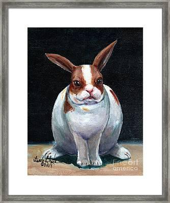 Chubby Bunnie Framed Print