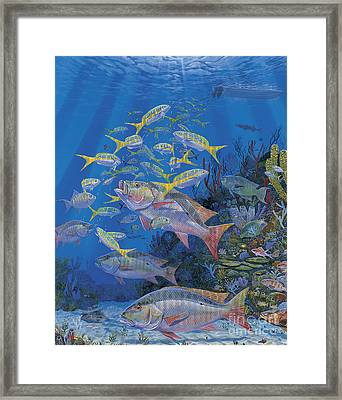 Chum Line Re0013 Framed Print by Carey Chen