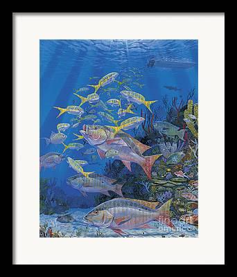 Parrotfish Paintings Framed Prints