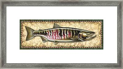Chum Salmon Spawning Panel Framed Print by JQ Licensing