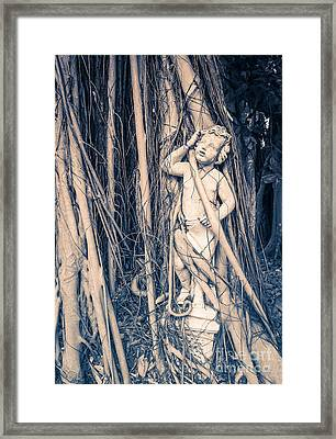 Cherub Framed Print by Edward Fielding