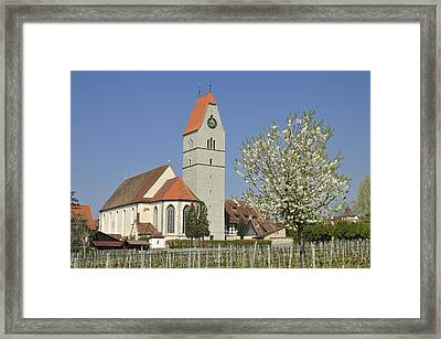 Church And Blooming Apple Tree Framed Print by Matthias Hauser