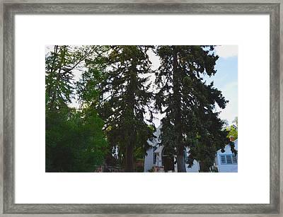 Church And Trees. Framed Print by Maegan Dann