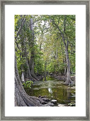 Cibolo Creek - 2 Framed Print