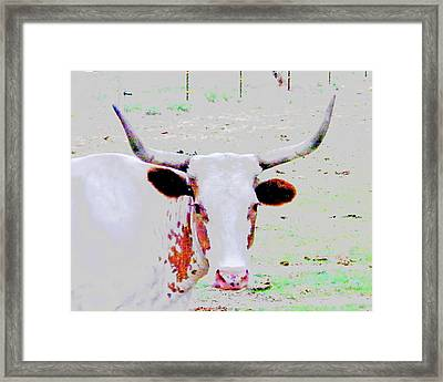 Cibolo Sweetie Pie Framed Print