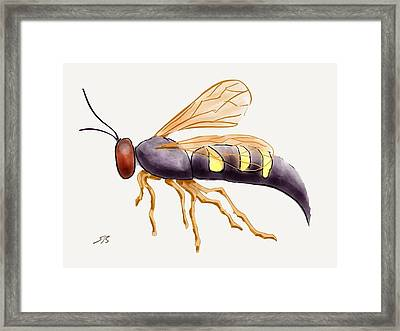 Cicada Killer Wasp Framed Print by Stacy C Bottoms