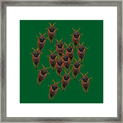 Cicadas In Green Framed Print by R  Allen Swezey