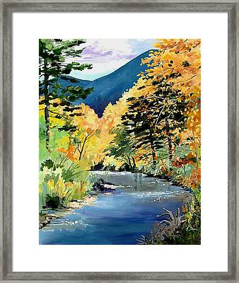 Cimarron Canyon Framed Print