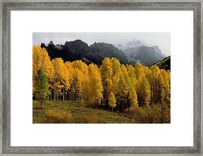 Cimarron Forks Framed Print