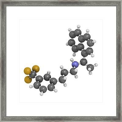 Cinacalcet Hyperparathyroidism Drug Framed Print by Molekuul