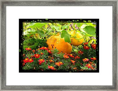 Cinderella's Carriage Framed Print by Marilyn Smith