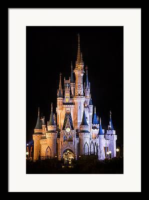 Disneyland Park Framed Prints