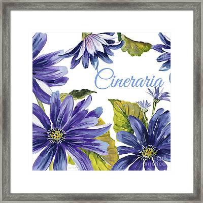 Cineraria-jp2587 Framed Print by Jean Plout