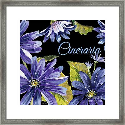 Cineraria-jp2594 Framed Print by Jean Plout