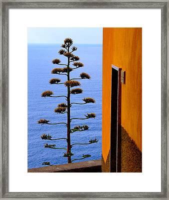 Cinque Terre View Framed Print