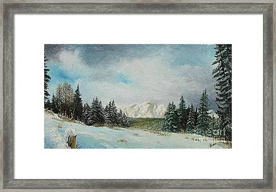 Framed Print featuring the painting Cioplea by Sorin Apostolescu