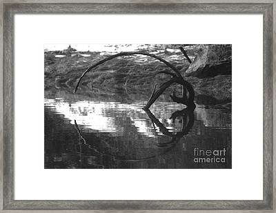 Circle And Heart Framed Print