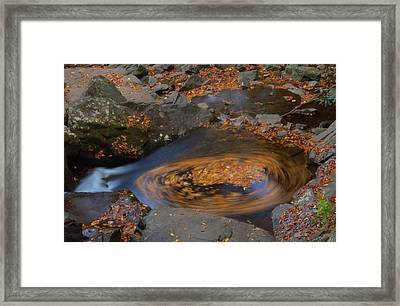 Circle Of Autumn Leaves Framed Print
