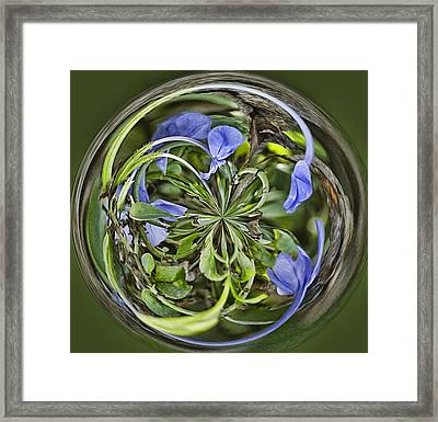 Circle Of Blues Framed Print by Anne Rodkin