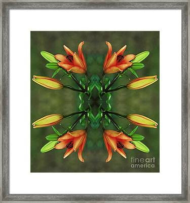 Circle Of Life Framed Print by Inspired Nature Photography Fine Art Photography