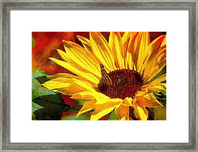 Circle Of Life............. Framed Print