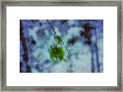 Circle Of Seasons Framed Print by Dan Sproul