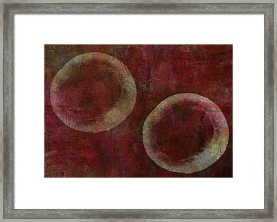 Circles Framed Print by Aged Pixel