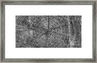 Circles Of Time Framed Print by Tim Gainey