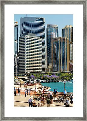 Circular Quay - Sydney - Australia - With Skyscrapers And A Hint Of Purple Jacaranda Framed Print