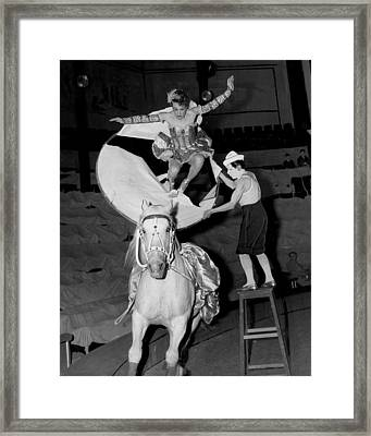Circus Horse Stunt Framed Print